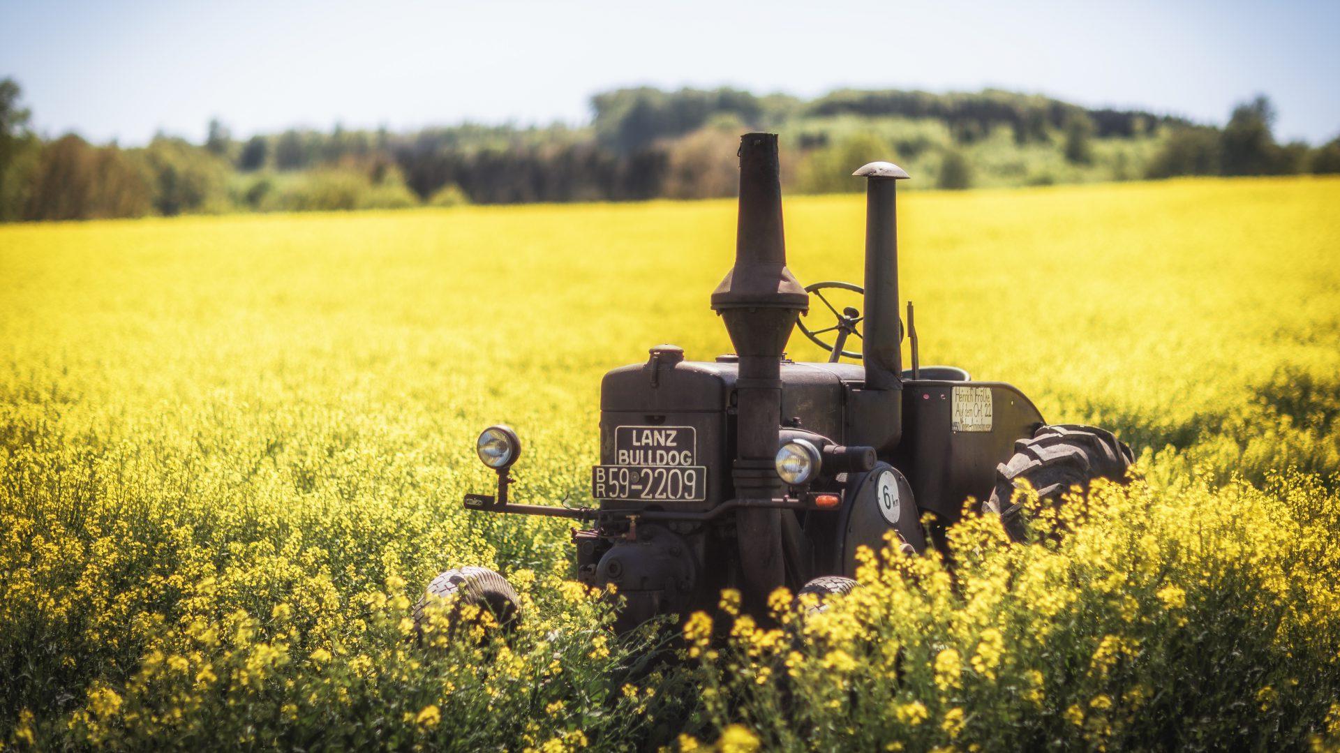 Alt- Traktoren- und Nutzfahrzeugfreunde Fürstenthum Lippe e. V.